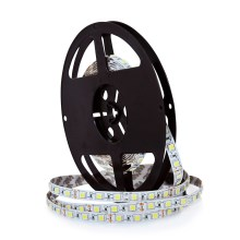 Banda LED 5m 45W/12V IP20 3000K