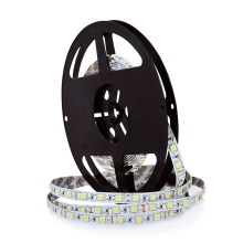 Banda LED 5m 45W/12V IP20 6000K