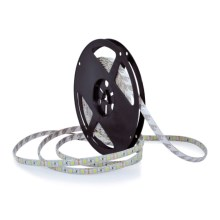 Banda LED 5m 45W/12V IP65 6000K
