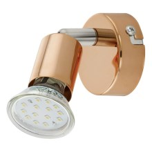 Eglo 94772 - LED Lampa spot BUZZ-COPPER 1xGU10/3W/230V
