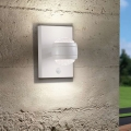 Eglo 96022 - LED Corp de iluminat perete exterior cu senzor SESIMBA 1 2xLED/3,7W