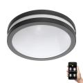 Eglo 97237 - LED Plafoniera baie LOCANA-C LED/14W/230V antracit