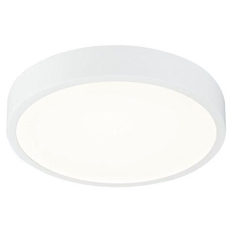Globo 12364-22 - LED Plafonierp dimmabilă baie ARCHIMEDES LED/22W/230V IP44