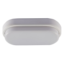 Greenlux - LED Plafonieră LED/12W/230V IP54