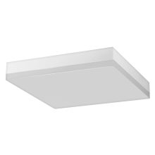 Greenlux - LED Plafonieră LED/18W/230V IP44
