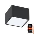 Immax NEO 07074L-15 - LED Lampă dimmabilă CANTO LED/12W/230V negru Tuya