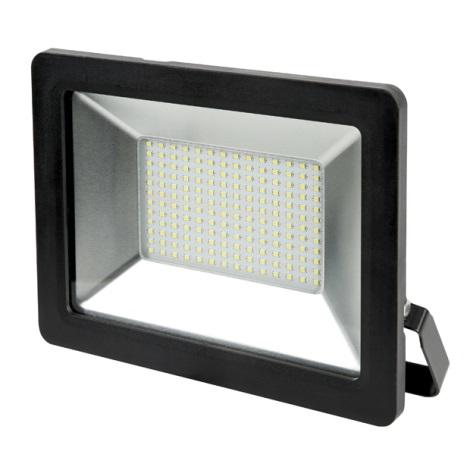 LED Proiector LED/100W/230V