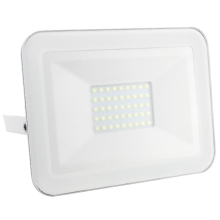 LED Proiector LED/30W/230V IP65