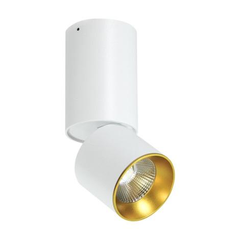 LED Spot de tavan LED/10W/230V