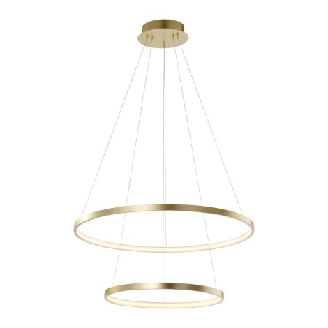 Leuchten Direkt 11525-12 -Lustră LED pe cablu CIRCLE 1xLED/18,5W/230V + LED/23,5W