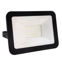 Nedes LF2023 - LED Proiector LED/30W/230V IP65