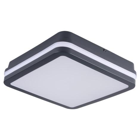 Plafonieră LED de exterior cu senzor BENO LED/24W/230V antracit IP54
