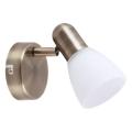 Rabalux - Lampa spot 1xE14/40W/230V